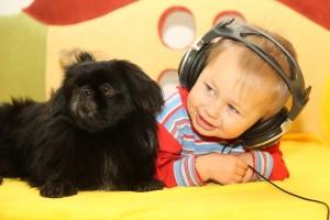 赤ちゃんと仲良くする犬