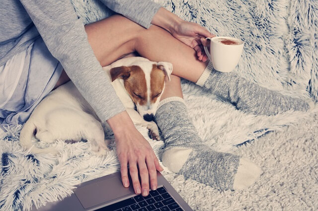 Woman in cozy home wear relaxing at home, using laptop. Soft, comfy lifestyle.